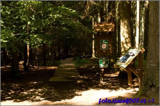 pro ochranu přírody je zde vybudován dřevěný chodník