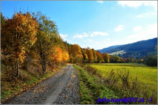 pohled na obec Krasov z lesní cesty