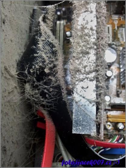 pohled na prach a pavučiny na grafické kartě