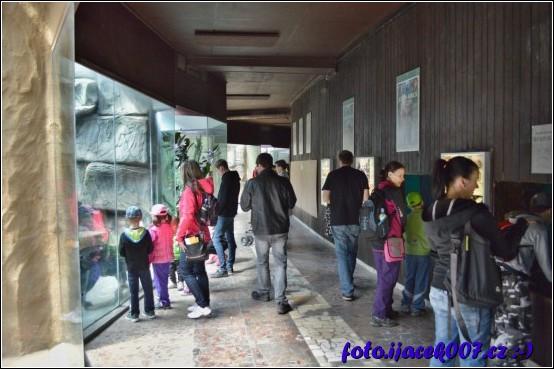 pohled do jednoho z pavilonu zoo
