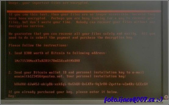 smutný pohled na obrazovku počítače napadeného novou veriantou viru Petya